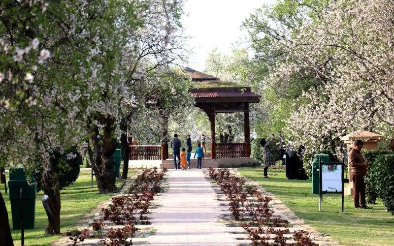 Badamwari to open from March 21