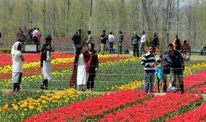 Showcasing GOI's normalcy canvas, now Kashmir is paying for hosting tourists